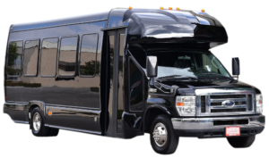 (B) VIP EXECUTIVE VIP MINI COACH (up to 24 passenger)
