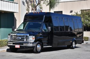 (F) Mini Limousine Coach (up to 18/22 Passengers)