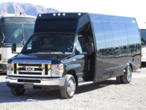 (D) Black Mini Limousine Coach (up to 18/22 Passengers)