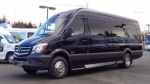 (A) MERCEDES BENZ LIMOUSINE SPRINTER COACH (up to 14 Passengers)