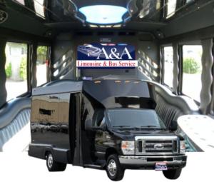 (D)Mini Limousine Coach (up to 16/18 Passengers)