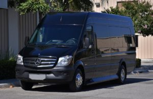 (C) Mercedes Benz Sprinter VIP Shuttle Coach (up to 14 passengers)
