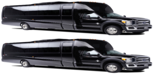(H) VIP EXECUTIVE VIP MINI COACHES (up to 56passengers) (2 Coaches)